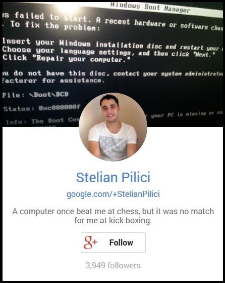 Stelian Pilici